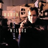 David Wilcox - Big Horizon